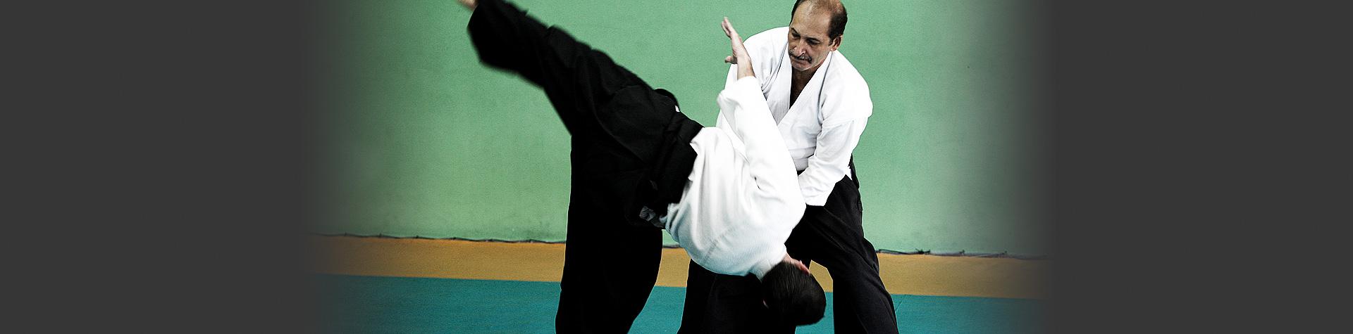 (c) Albertoaikidorj.com.br